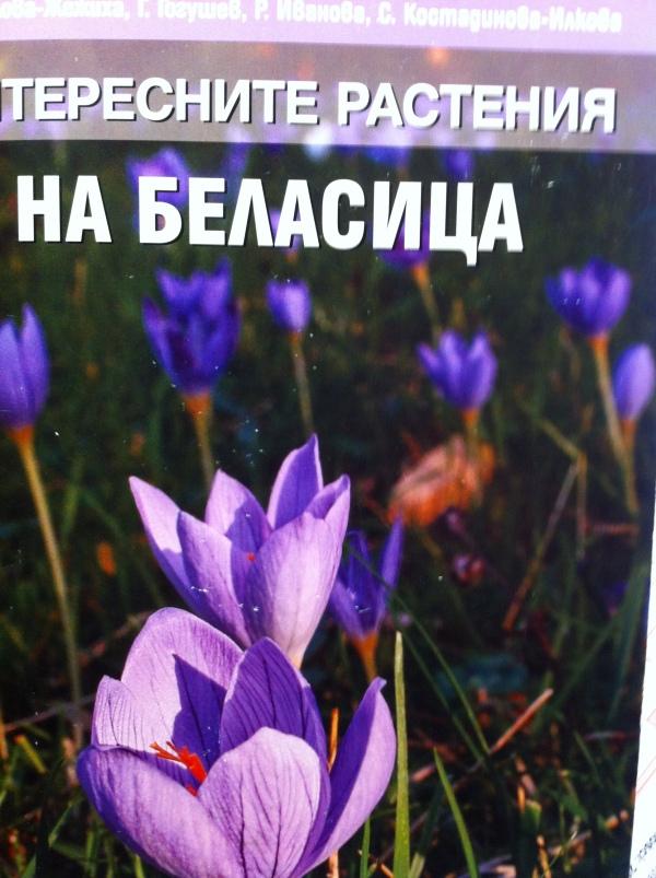 bielasicabook.jpg