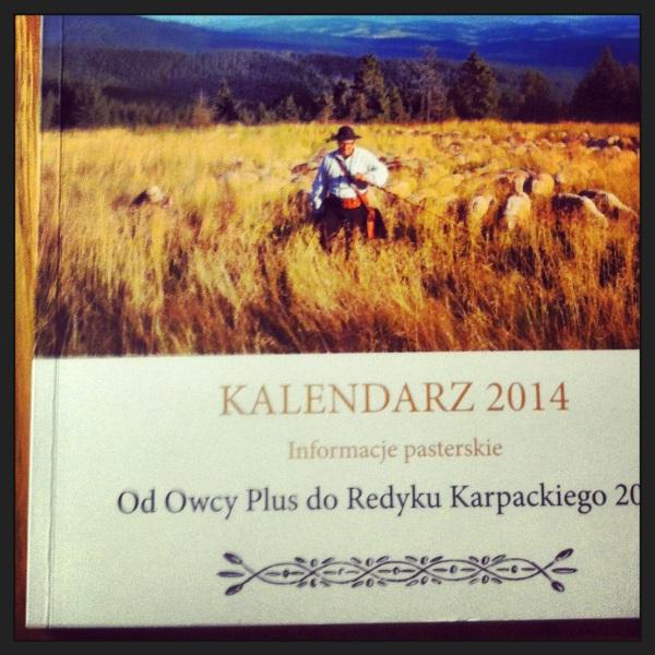 redykalend2014
