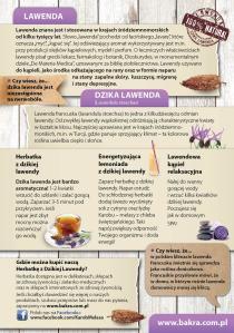 lawbakra2
